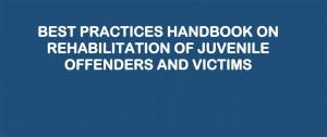 Te puedes descargar el Manual de Buenas Prácticas para la Rehabilitación Juvenil